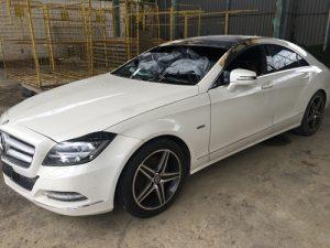 Mercedes incidentata